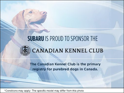 Ogilvie Subaru is Proud to Sponsor the Canadian Kennel Club